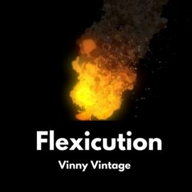 Vinny Vintage - Flexicution